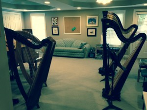 Harp lessons by Atlanta Harpist Lisa Handman