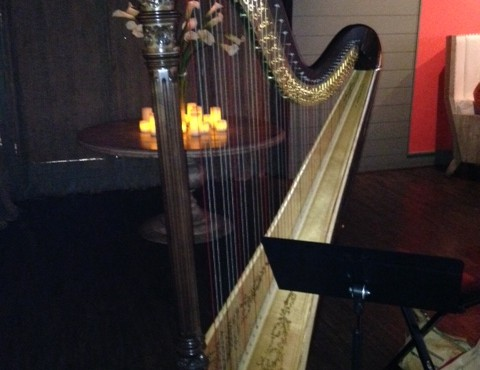 Atlanta Harpist performs for Kevin Hart's surprise Engagement – Here Comes the Bride!