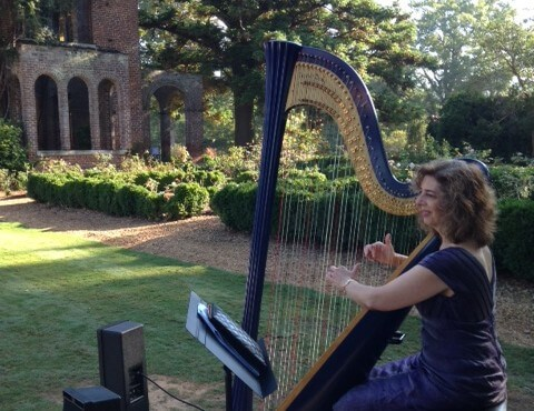 "Atlanta Harpist Lisa Handman plays Wedding in Alabama for ""Say Yes to the Dress"""