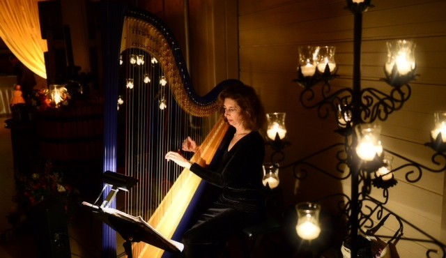Lisa Handman – Concert at Northeast/Spruill Library  November 13, 2016 3:00 p.m.