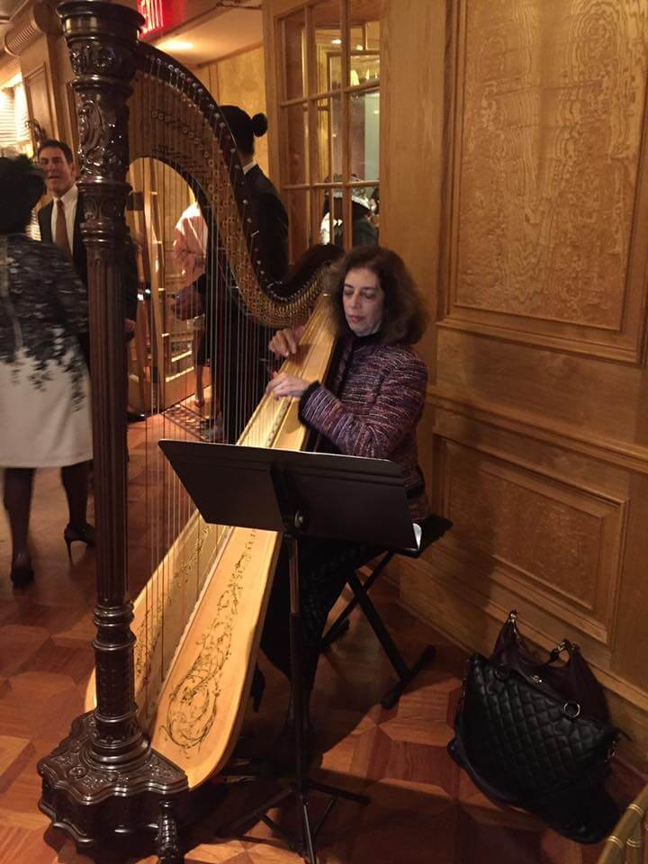 Corporate Entertainment Ideas - Atlanta Harp Player, Lisa Handman