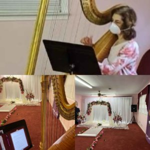 Atlanta Harpist Performs At Socially Distant Wedding